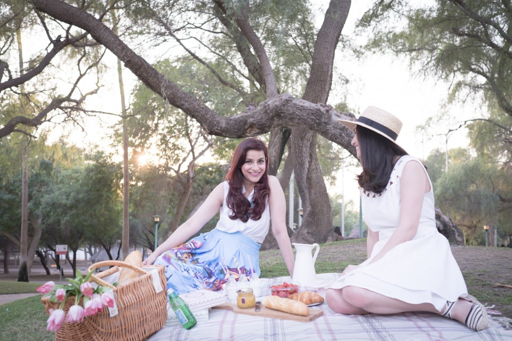 Picnic in Dubai